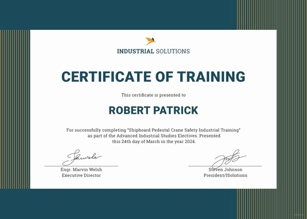 Certificate Of Training Template Word Lovely 82 Free Printable Certificate Template Examples In Pdf