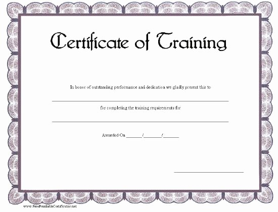 Certificate Of Training Template Word Luxury Certificate Templates