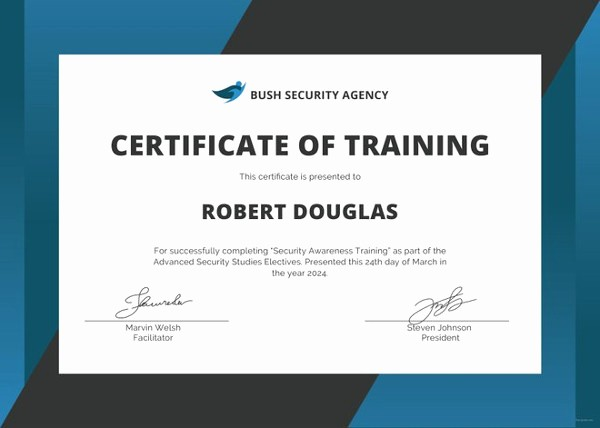 Certificate Of Training Template Word Unique 27 Training Certificate Templates Doc Psd Ai
