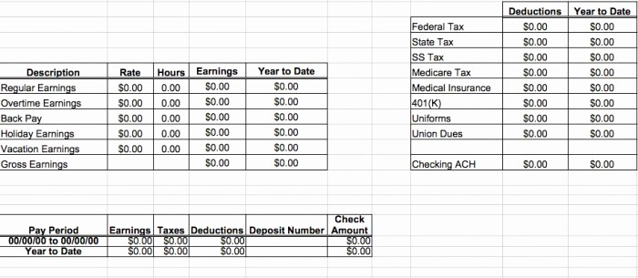 Check Stub Template for Excel Lovely 29 Great Pay Slip Paycheck Stub Templates Free