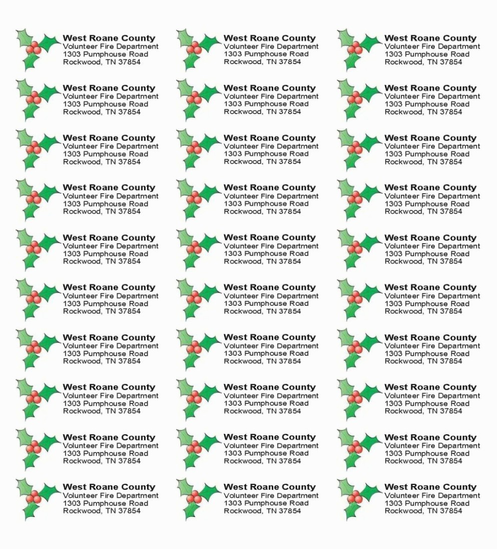 Christmas Address Label Template Free New the Five Secrets You Will