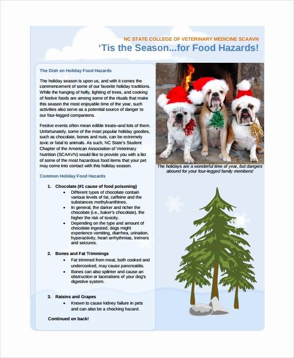 Christmas Family Newsletter Template Free New 10 Family Newsletter Templates
