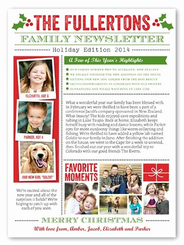 Christmas Family Newsletter Templates Free Lovely 11 Best Images About Christmas Family Newsletter On
