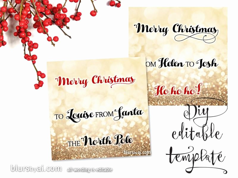 Christmas Gift Tag Template Word New Printable Christmas T Tags Template for Word Fully