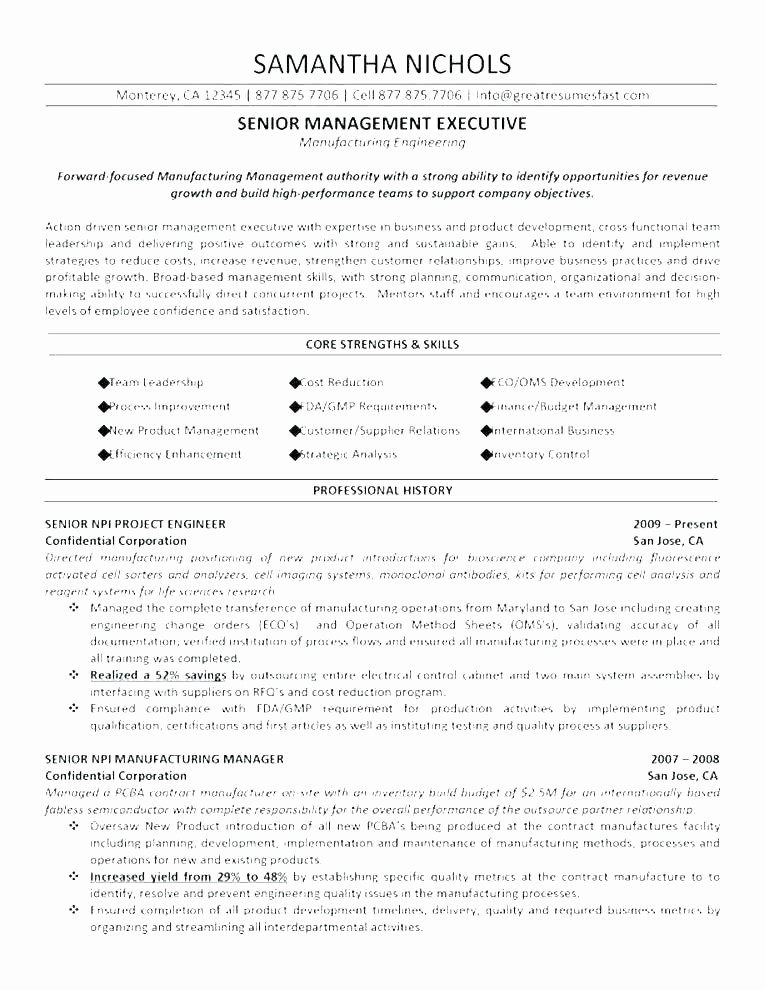 Classic Resume Template Word Download Beautiful Executive Classic format Resume Template afterelevenblog
