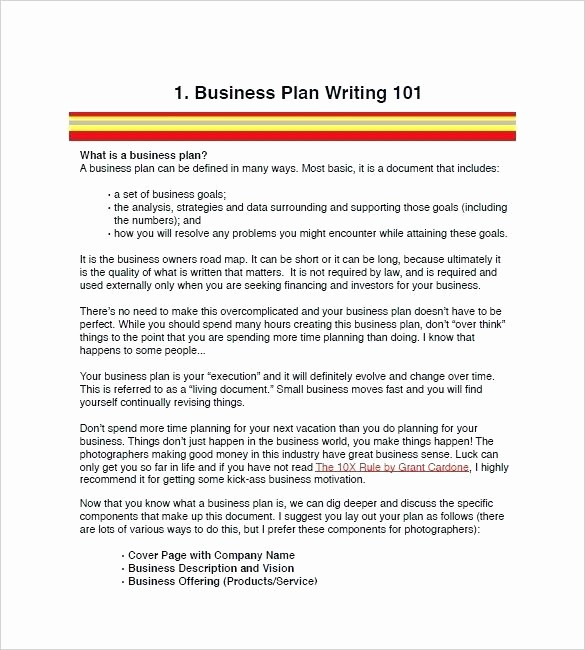 Construction Business Plan Template Word Beautiful Security Pany Business Plan Examples Template for