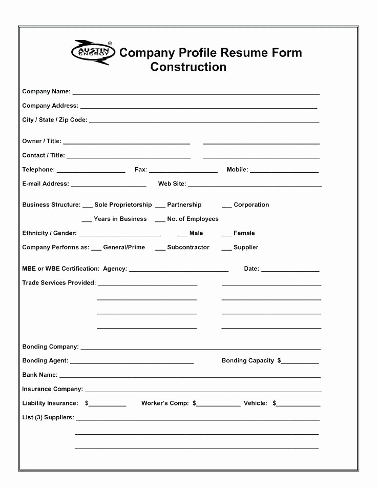 Construction Business Plan Template Word Elegant Business Profile Template Pany Informational Brochures