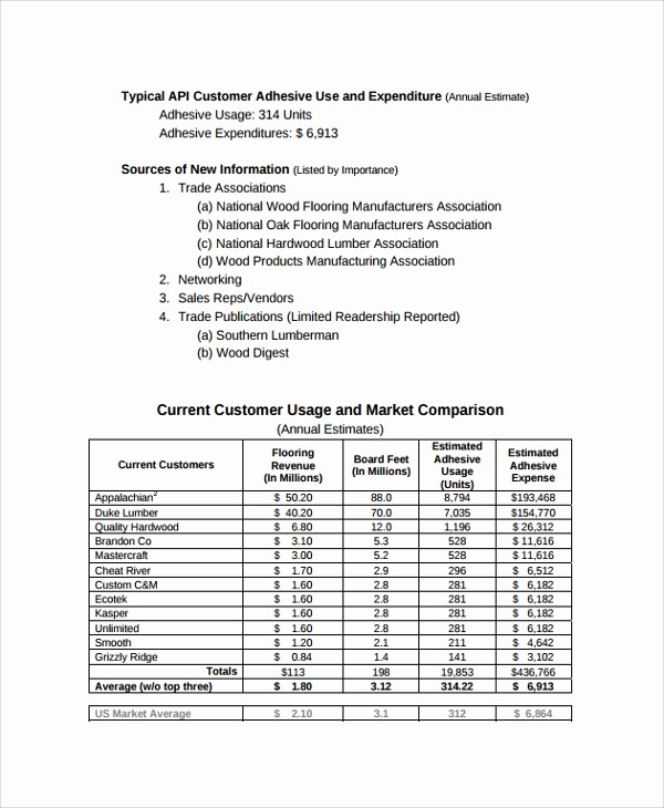 Consulting Report Template Microsoft Word Beautiful 13 Sample Consulting Reports
