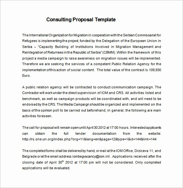 Consulting Report Template Microsoft Word Unique 16 Consulting Proposal Templates Doc Pdf Excel
