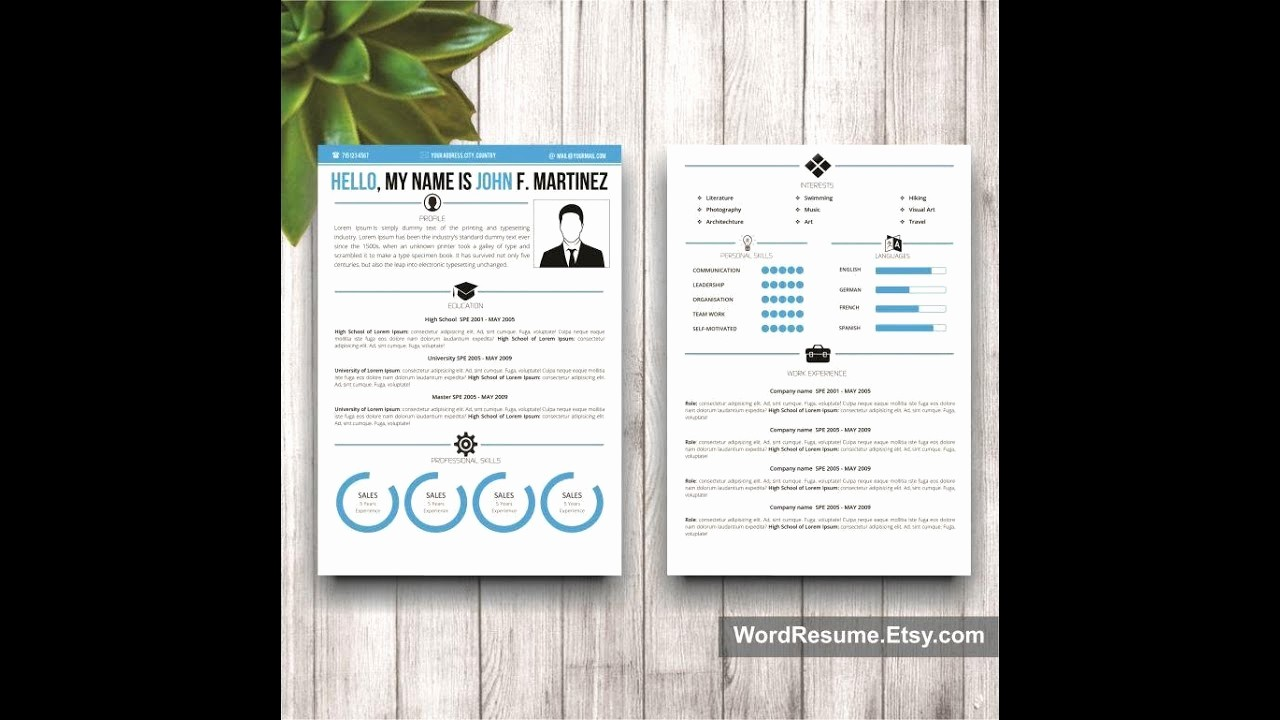 Creative Resume Template Microsoft Word Awesome Ms Word Creative Resume Template