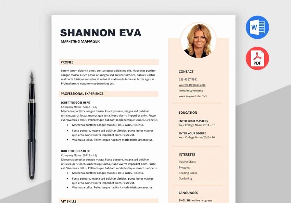 Creative Resume Template Microsoft Word Beautiful Shine Free Creative Resume Template Microsoft Word