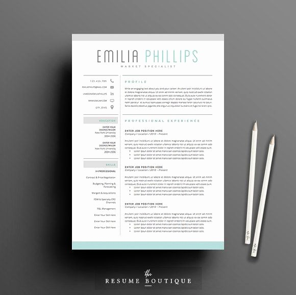 Creative Resume Template Microsoft Word Luxury 22 Best Clinical Ladder Images On Pinterest