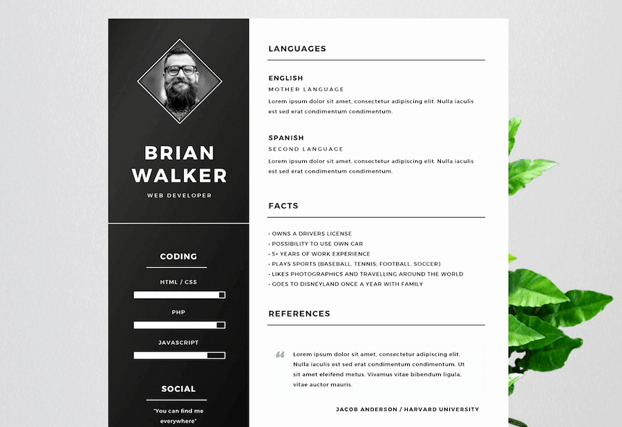 Creative Resume Template Microsoft Word Unique 65 Eye Catching Cv Templates for Ms Word