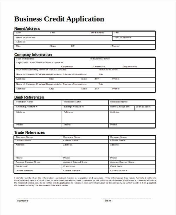 Credit Application form for Business Inspirational Application form In Word