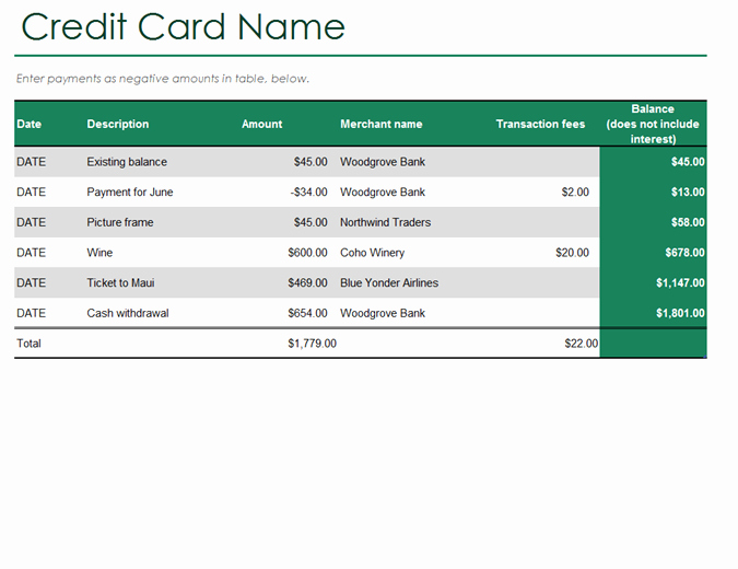 Credit Card Payment Excel Template Unique Credit Card Log