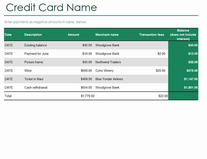 Credit Card Payment Excel Template Unique Credit Card Log