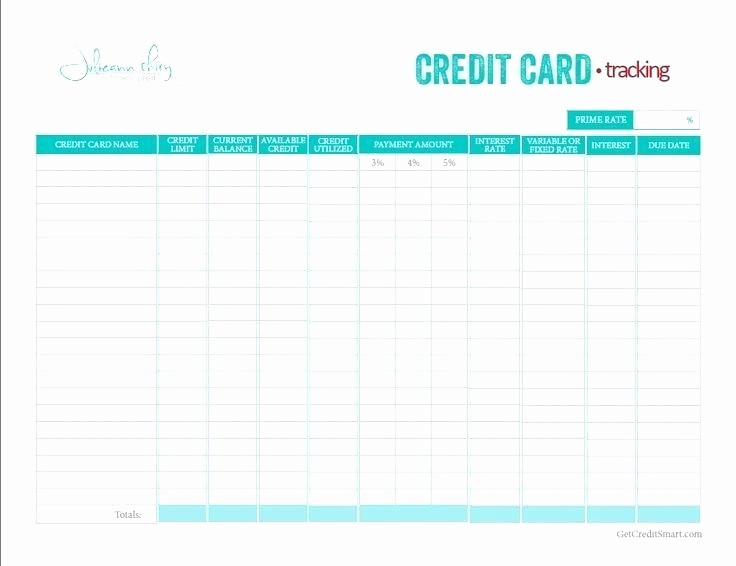Credit Card Payment Tracking Spreadsheet New Credit Card Payoff Excel Spreadsheet Template Tracking