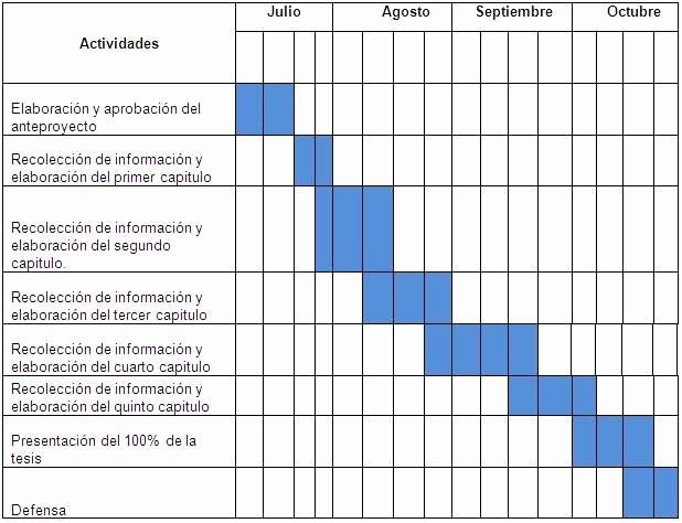 Cronogramas De Actividades En Excel Lovely Modelo De Cronograma De Actividades Frompo