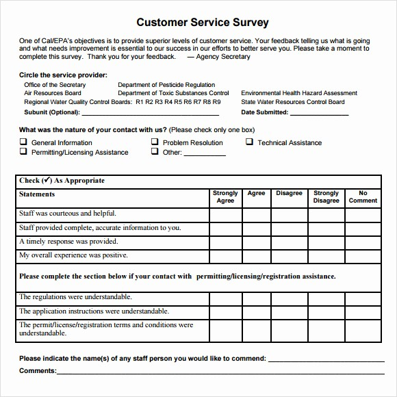 Customer Satisfaction Survey Template Word Lovely 7 Client Satisfaction Survey Samples