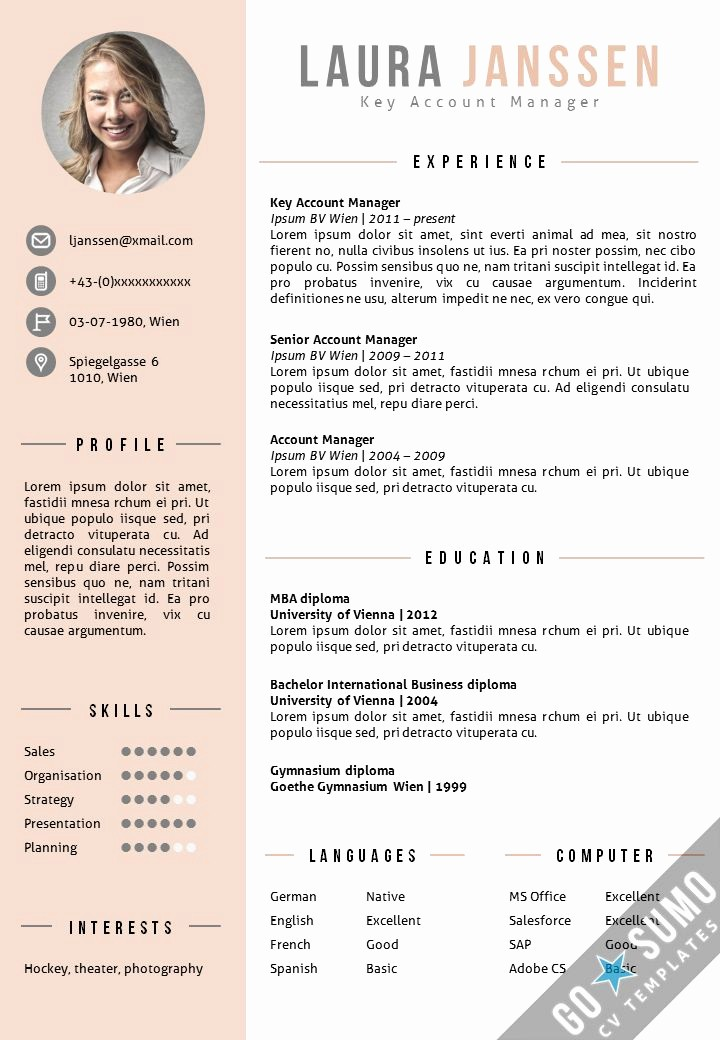 Cv format Samples In Word Fresh 25 Best Ideas About Cv Template On Pinterest