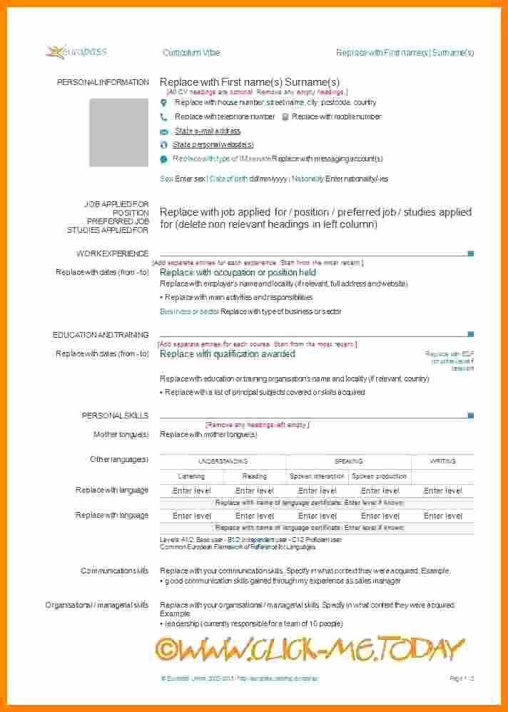 Cv format Samples In Word New 10 Cv Model Word 2015
