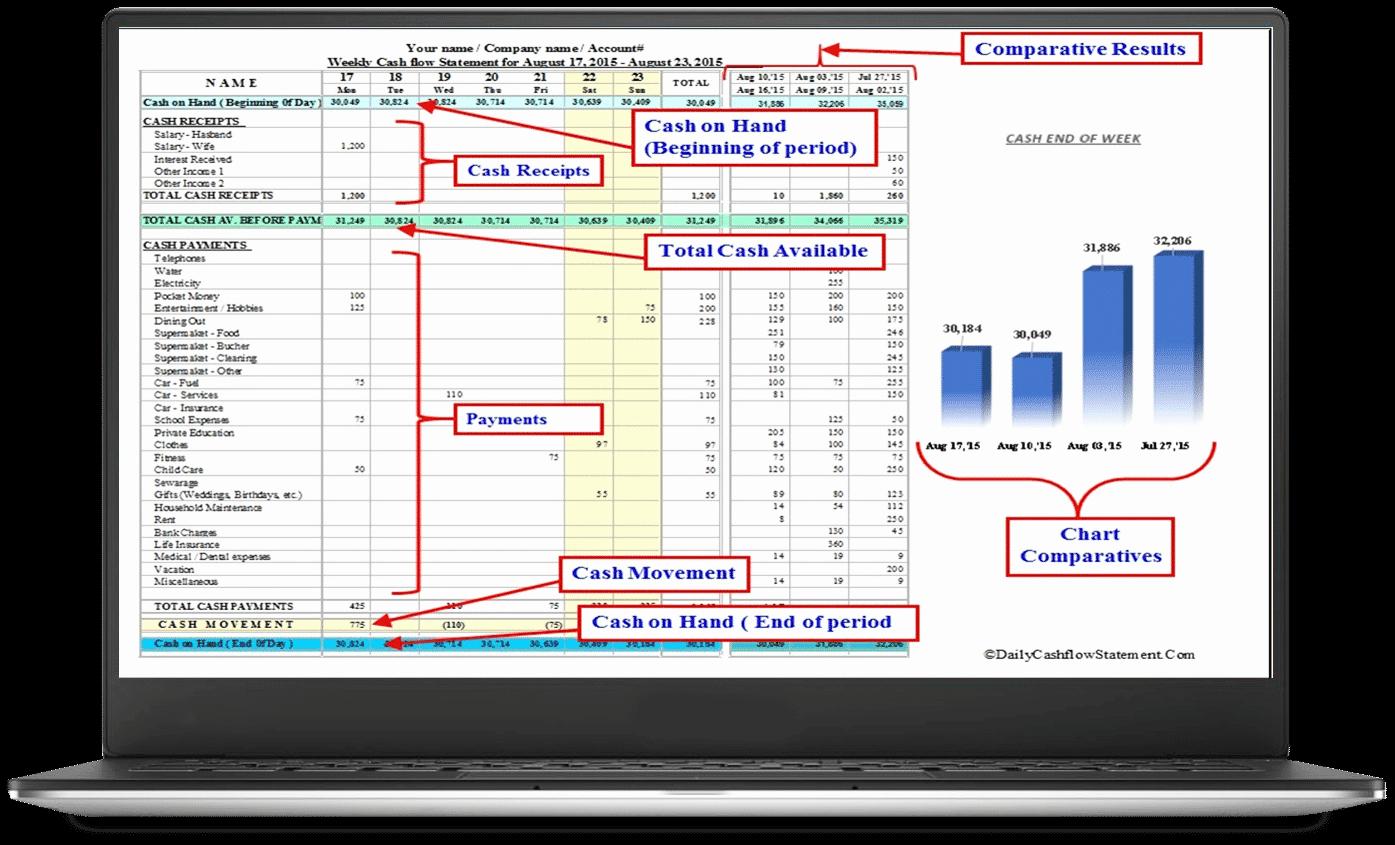 Daily Cash Report Template Excel Elegant Cash Flow Statement