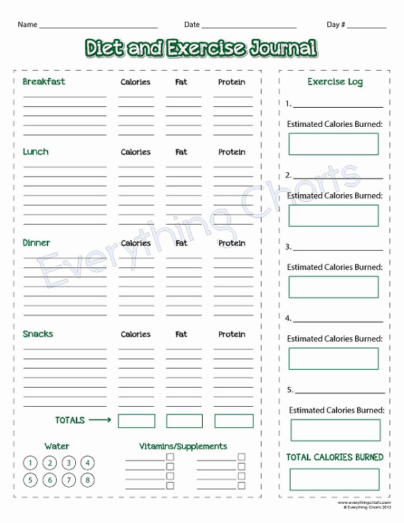 Daily Food and Exercise Log Beautiful Diet and Exercise Journal Pdf File Printable