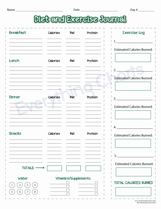 Daily Food and Exercise Log Fresh Diet and Exercise Journal Pdf File Printable