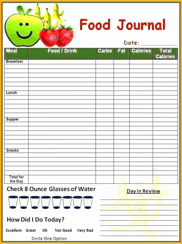 Daily Food and Exercise Log Fresh Printable Diabetic Food Diary Template Templates