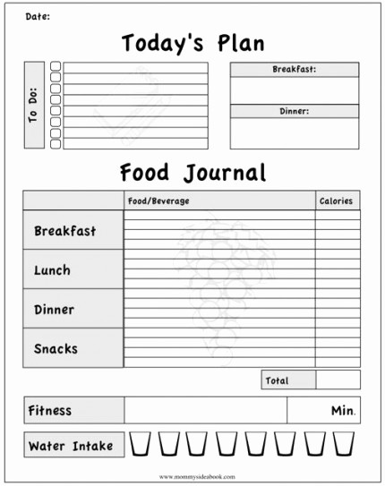 Daily Food and Exercise Log Lovely 8 Best Of Food Intake Journal Printable Printable
