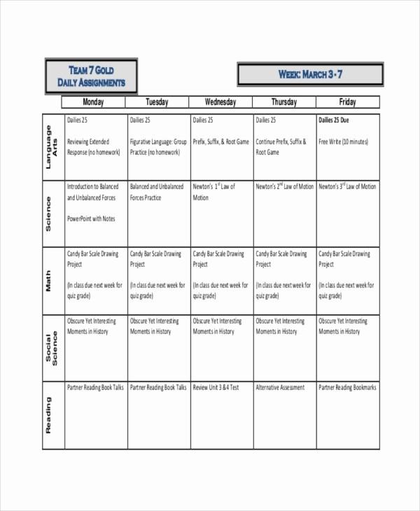 Daily Homework assignment Sheet Template Fresh 8 Project assignment Templates Free Sample Example