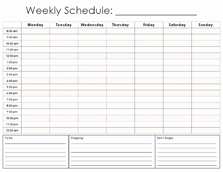 Daily Hourly Schedule Excel Template Fresh Hourly Schedule Printable Planner Daily Inserts Plan
