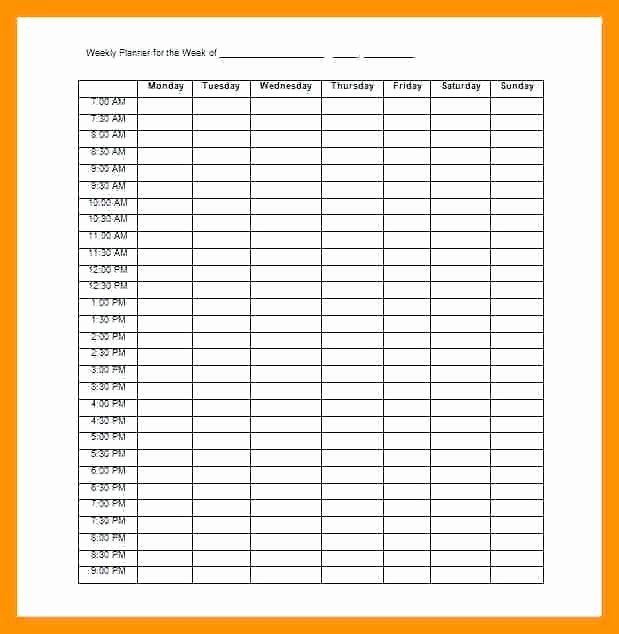 Daily Hourly Schedule Excel Template Inspirational Hourly Calendar Template Excel Task Colorful Weekly