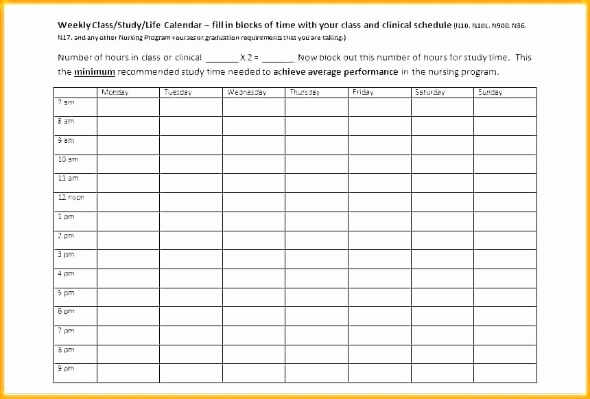 Daily Hourly Schedule Template Excel Lovely Professional Schedule Template Work Schedule Template