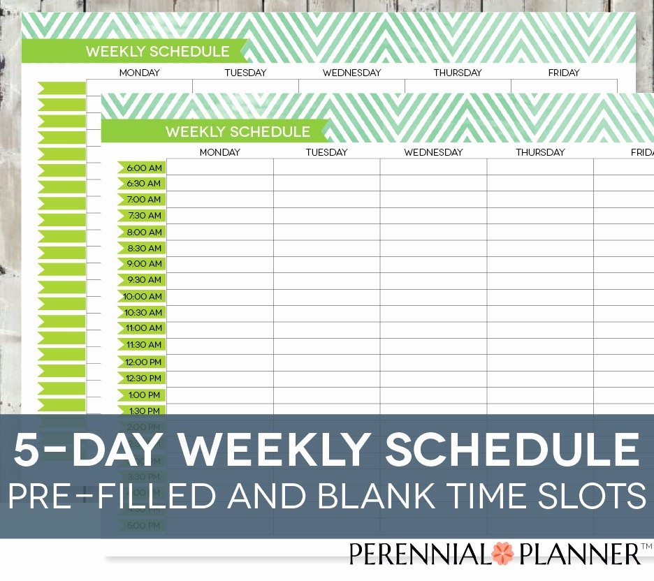 Daily Planner with Time Slots New Daily Schedule Printable Editable Times Half Hourly Weekly