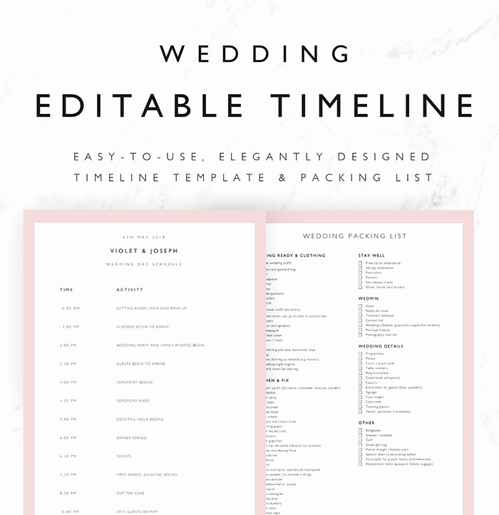 Day Of event Timeline Template Elegant 25 Beautiful Wedding Timeline Templates Mashtrelo