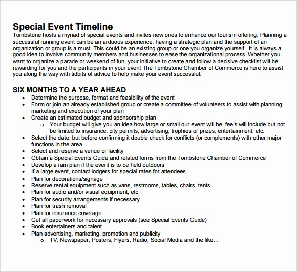 Day Of event Timeline Template Inspirational 9 event Timeline Samples
