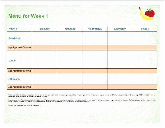 Daycare Menu Templates Free Download Fresh 30 Of Template for Documentation In Child Care