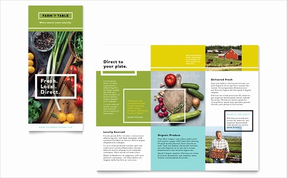 Design A Pamphlet In Word Luxury Brochure Template Word 41 Free Word Documents Download