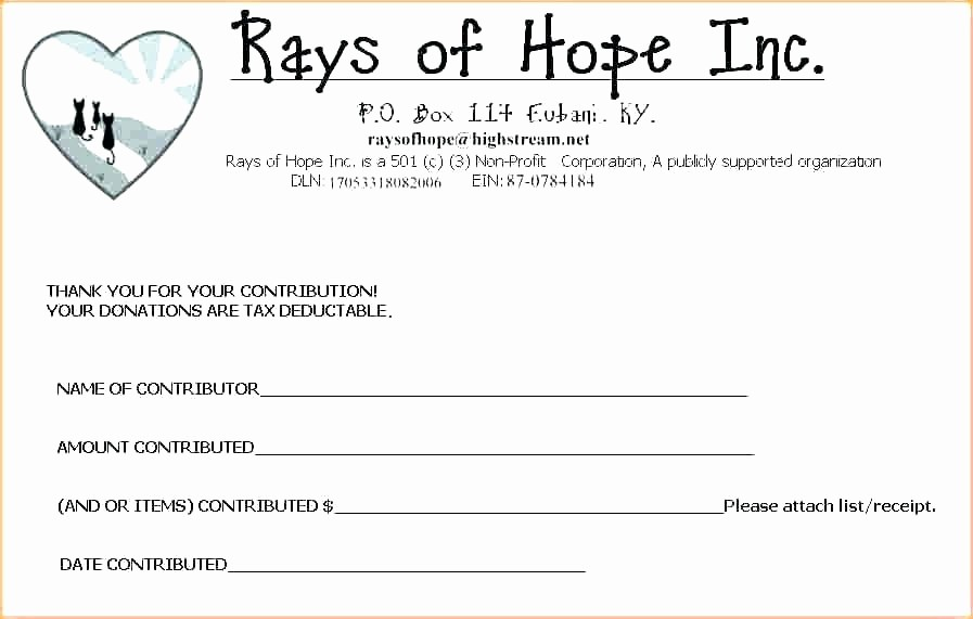 Donation Receipt Template Google Docs Luxury Tax Donation form Template Charitable Kind In Contribution