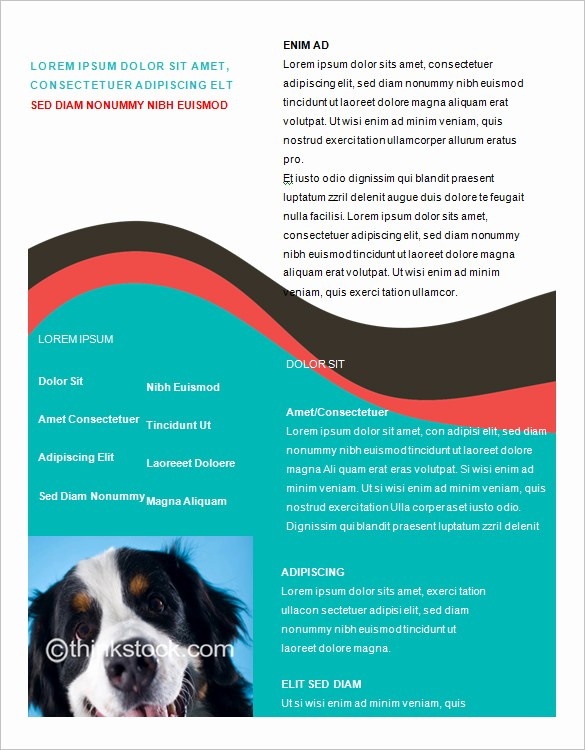 Download Brochure Templates for Word New Microsoft Brochure Template 49 Free Word Pdf Ppt