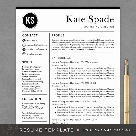 Download Free Professional Resume Templates Unique Professional Resume Template Cv Template Mac or Pc for