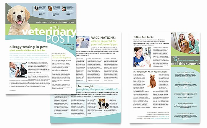 Vet Clinic Newsletter Templates PT D