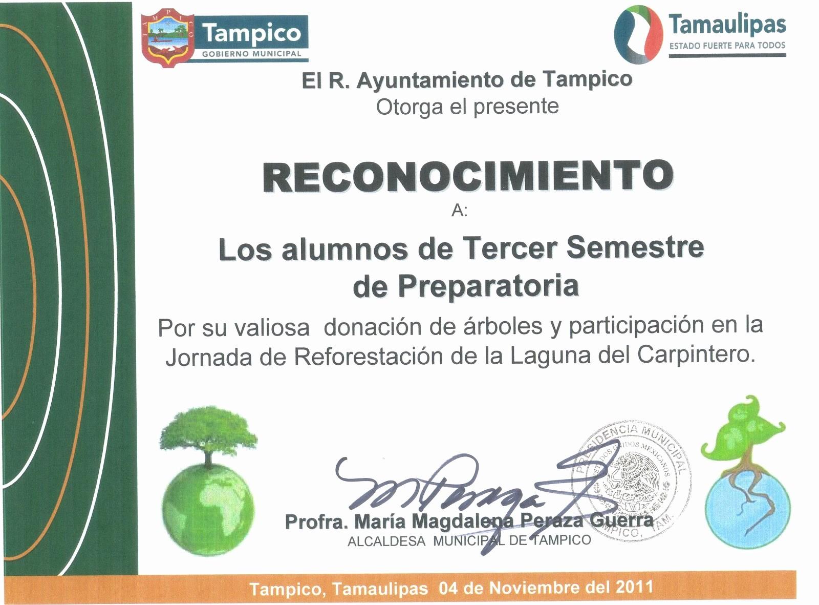 Ejemplos De Certificados De Reconocimiento New Ejemplo De Certificado De Reconocimiento Para Iglesia