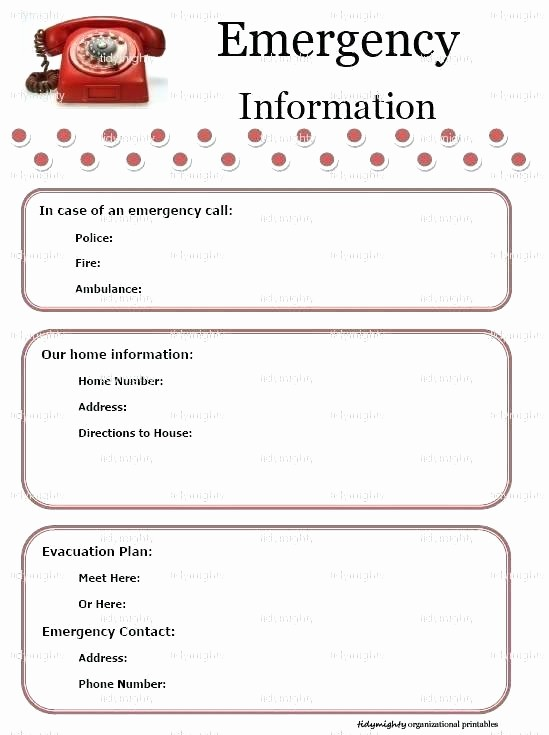 Emergency Contact List for Babysitters Best Of Babysitter Information Sheet Template Checklists Checklist