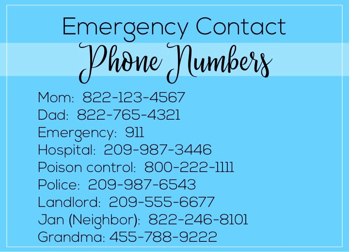 Emergency Contact List for Babysitters Fresh Babysitter Essentials if You Have A toddler the Diy