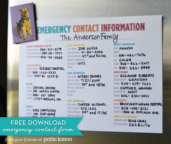 Emergency Contact Sheet for Nanny Lovely Free Printable Emergency Contact Information Sheet to Have