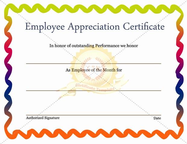 Employee Award Certificate Templates Free Inspirational Free Editable Employee Appreciation Certificate Example