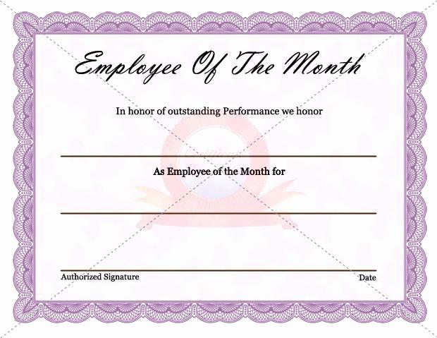 Employee Of the Day Certificate Inspirational Best 25 Employee Awards Ideas On Pinterest