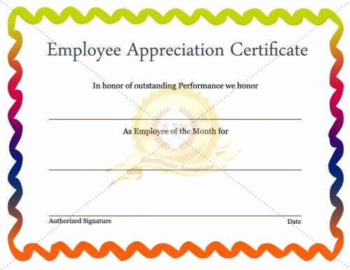 Employee Recognition Certificates Templates Free Fresh 28 Best Images About Employee Award On Pinterest